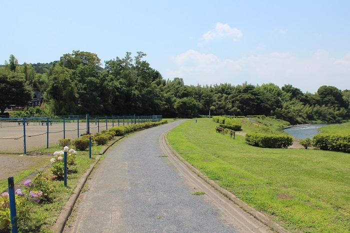 【周辺】 友田レクリェーション広場 徒歩7分:多摩川の川辺に広がる、緑豊かな公園です。